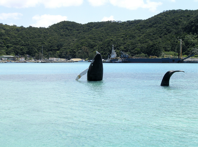 慶良間(ケラマ)諸島の座間味などのおすすめ観光スポット
