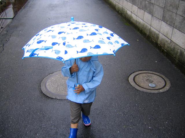 五月雨、五月晴れとは?いつ?本当の意味は