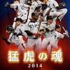 阪神タイガース、日本一ならず残念。応援感謝セールは?