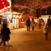上越市・高田城百万人観桜会でブルーインパルスが展示飛行実施