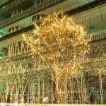 2015 仙台 光のページェントの場所や駐車場などについて